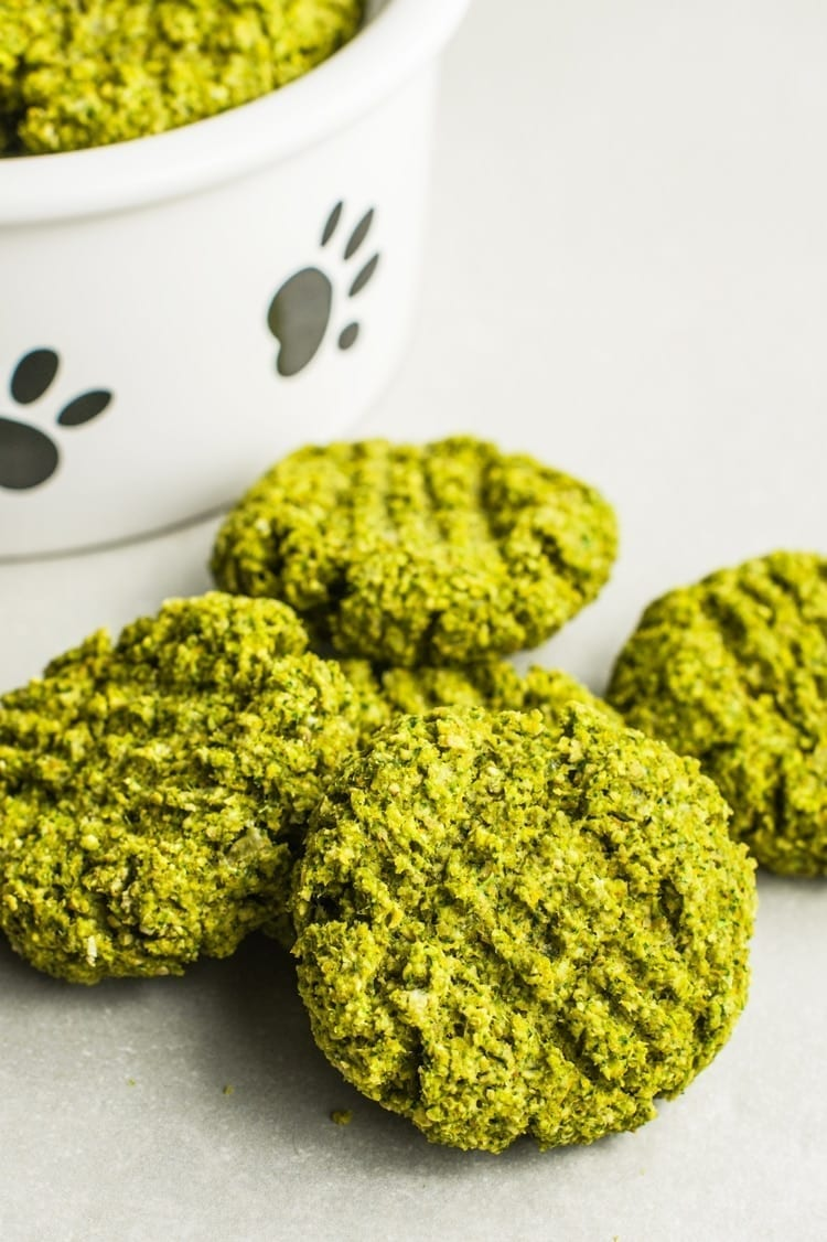 Weekly Recipe For Dogs: Doggie Biscuit 6