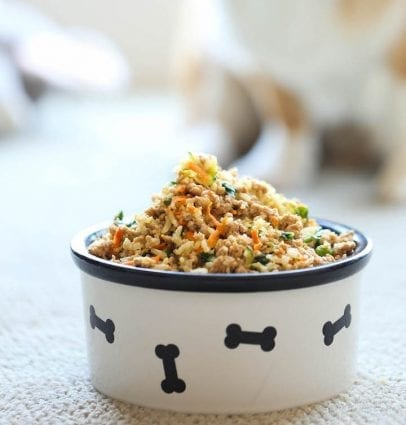 Weekly Recipe for Dogs: Turkey and Veggies petworldglobal.com