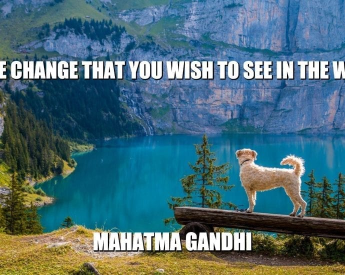 Daily Quotes: Be the Change You Wish to See in the World petworldglobal.com