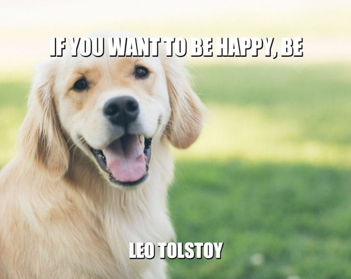 Daily Quotes: If You Want To Be Happy, Be petworldglobal.com