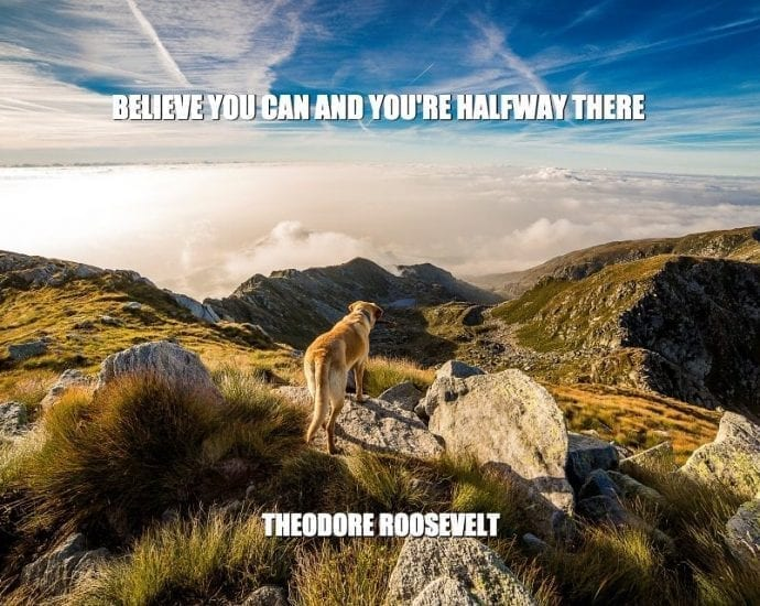 Daily Quotes: Believe You Can And You're Halfway There petworldglobal.com
