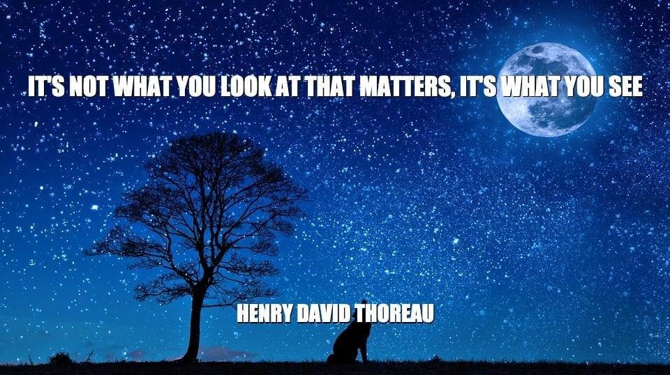 Daily Quotes: It's Not What You Look At That Matters, It's What You See petworldglobal.com