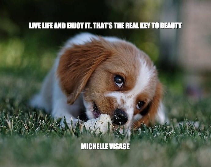 Daily Quotes: Live Life And Enjoy It, That's The Real Key To Beauty petworldglobal.com