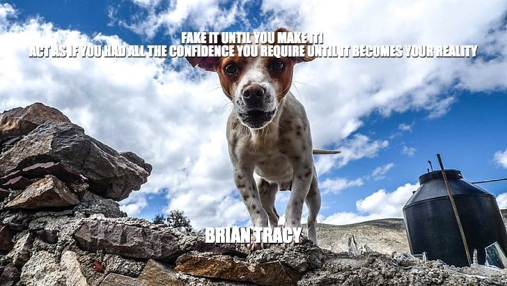 Daily Quotes: Fake It Until You Make It! Act As If You Had All The Confidence You Require Until It Becomes Your Reality petworldglobal.com