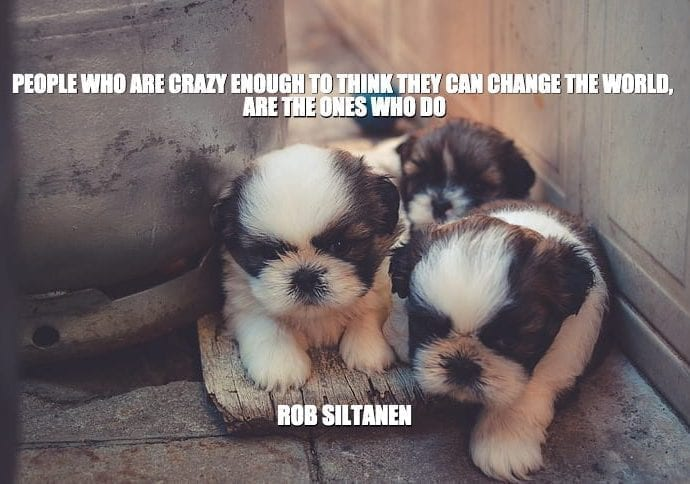 Daily Quotes: People Who Are Crazy Enough To Think They Can Change The World, Are The Ones Who Do petworldglobal.com