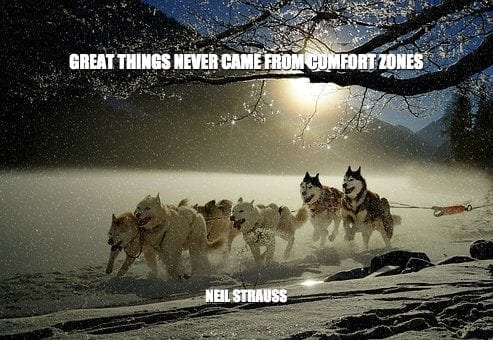 Daily Quotes: Great Things Never Come From Comfort Zones 3