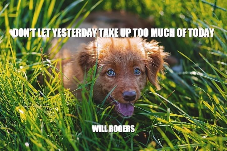 Daily Quotes: Don't Let Yesterday Take Up Too Much Of Today petworldglobal.com
