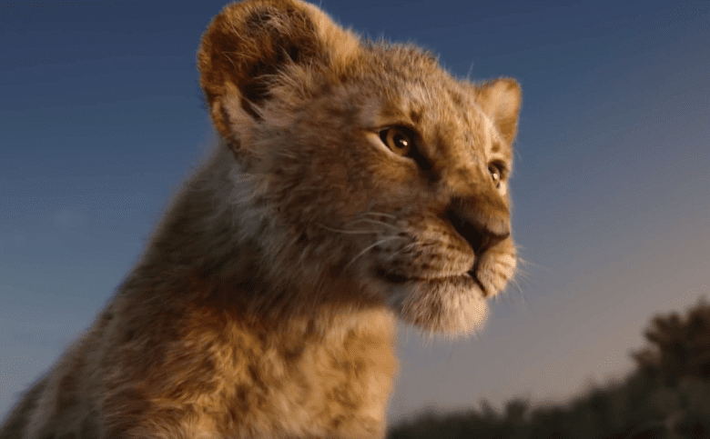 The Lion King 2019 - Live Action of Greatest Animated Movie of All Time petworldglobal.com