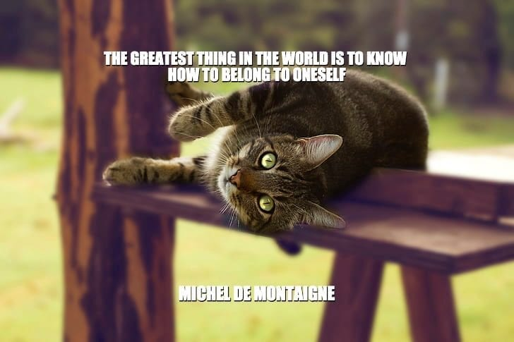 Daily Quotes: The Greatest Thing In The World Is To Know How To Belong To Oneself petworldglobal.com