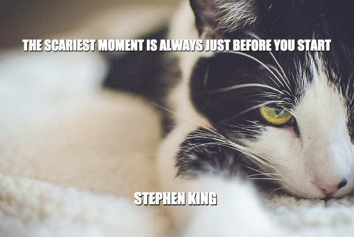 Daily Quotes: The Scariest Moment is Always Just Before You Start petworldglobal.com