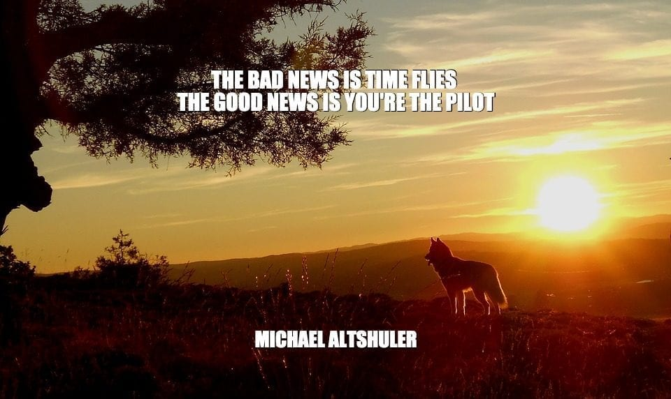 Daily Quotes: The Bad News Is Time Flies. The Good News Is You're The Pilot petworldglobal.com
