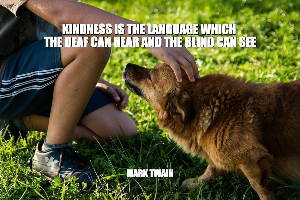 Daily Quotes: Kindness Is The Language Which The Deaf Can Hear And The Blind Can See petworldglobal.com