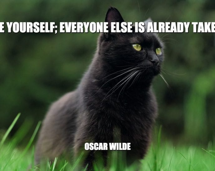 Daily Quotes: Be Yourself; Everyone Else Is Already Taken petworldglobal.com