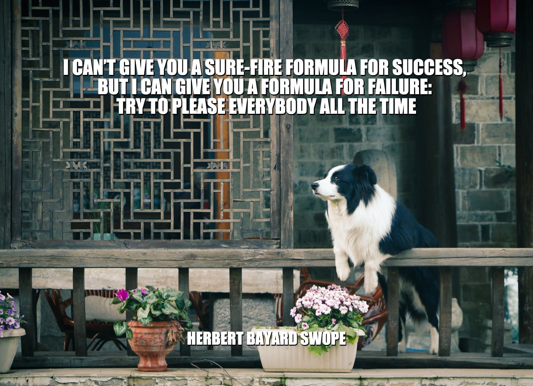 Daily Quotes: I Can't Give You A Sure-Fire Formula For Success, But I Can Give You A Formula For Failure: Try To Please Everybody All The Time petworldglobal.com