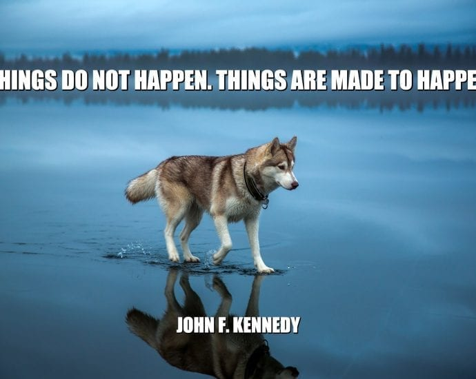 Daily Quotes: Things Do Not Happen. Things Are Made To Happen
