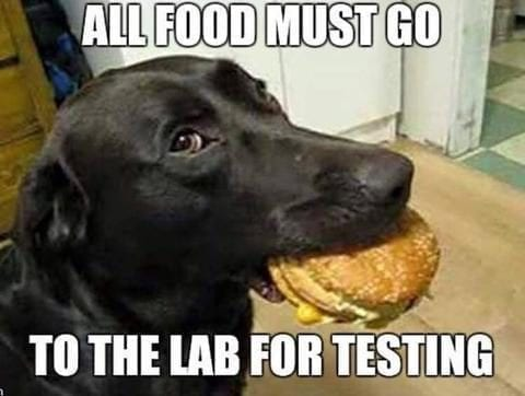 Hilarious...All Food Must Go To The Lab For Testing