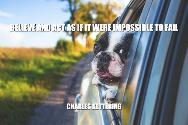 Daily Quotes: Believe And Act As If It Were Impossible To Fail petworldglobal.com