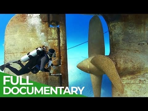 Exploring Shipwreck Coral Reefs   Blue World   Free Documentary Nature petworldglobal.com