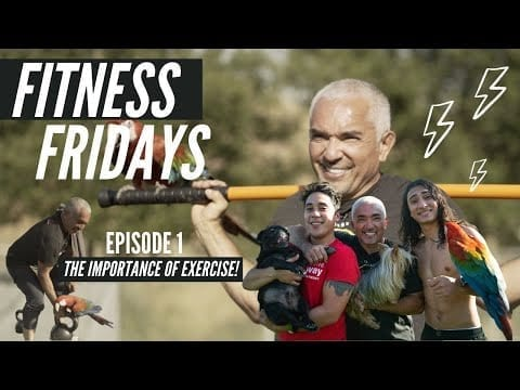Fitness Fridays Episode 1: Importance of Exercise & Becoming A Better Pack Leader Of Our Lives petworldglobal.com