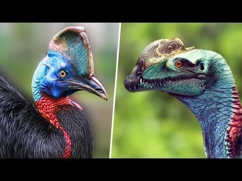 9 Birds That Are Secretly Living Dinosaurs Among us petworldglobal.com