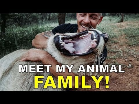 Dean Schneider - Hakuna Mipaka VLOG 6 Meet my Animal Family petworldglobal.com