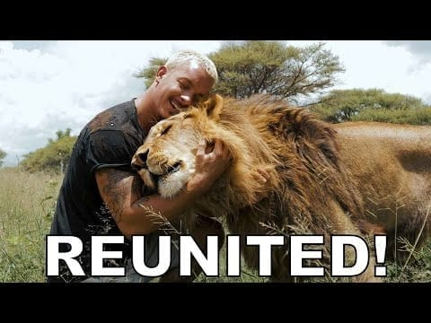 Dean Schneider - Reunited with the Lions petworldglobal.com