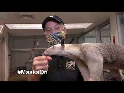 Mask PSA - Cincinnati Zoo #MasksOn petworldglobal.com