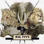 Natgeo Documentary - SAFARI 3D ~~ THE BIG FIVE AFRICA ~~.. petworldglobal.com