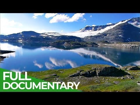 Norway: Land of Fjords, Islands and Vikings | Free Documentary Nature petworldglobal.com