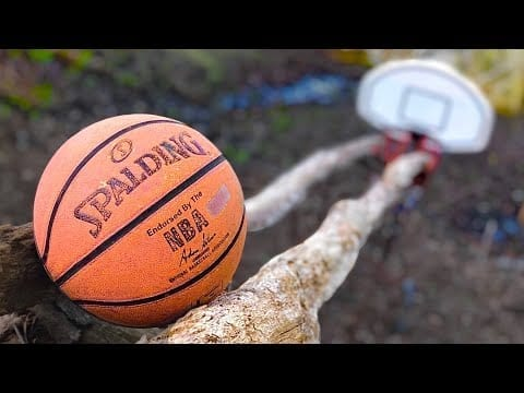 The Swish Machine: 70 Step Basketball Trickshot (Rube Goldberg Machine) petworldglobal.com
