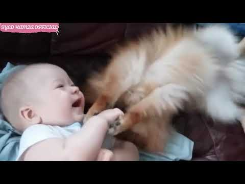 Cute Babies With Dogs Compilation 2020 | Funny And So Cute | Must Watch petworldglobal.com