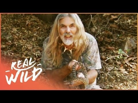 Manny Puig Finds Poisonous Snakes In The Mountains Of California   Savage Wild   Real Wild petworldglobal.com