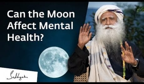 Can the Moon Affect Mental Health? petworldglobal.com