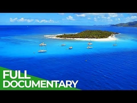 The British Virgin Islands - Pearl of the Caribbean | Free Documentary Nature petworldglobal.com