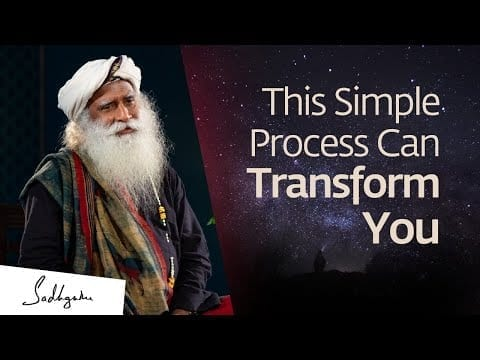 This Simple Process Can Transform Your Life Phenomenally petworldglobal.com